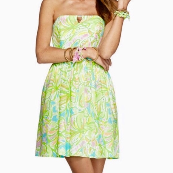 Lilly Pulitzer Dresses & Skirts - Lilly Pulitzer   Richelle Dress in Elephant Ears 0
